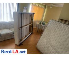 Roommate for 1bedroom apartment - Image 9/9