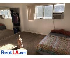 Room for rent in a 2br 2ba apartment - Image 9/9