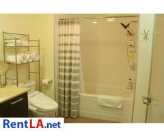 SUBLEASE FOR RENT - Image 8/17