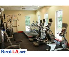 SUBLEASE FOR RENT - Image 11/17