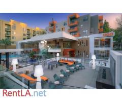 AVA Studio City 2B2B second bedroom for rent