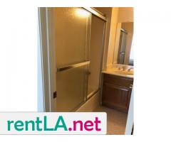 Large, sunny room, bath, walk-in closet - Image 1/6