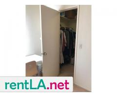 Large, sunny room, bath, walk-in closet - Image 3/6